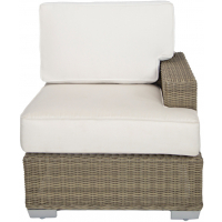 PALISADES SECTIONAL RAF CHAIR
